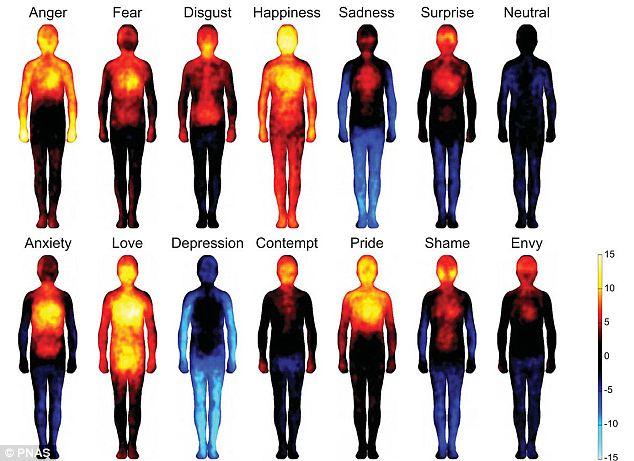 ¿En qué zona del cuerpo se manifiesta cada emoción?