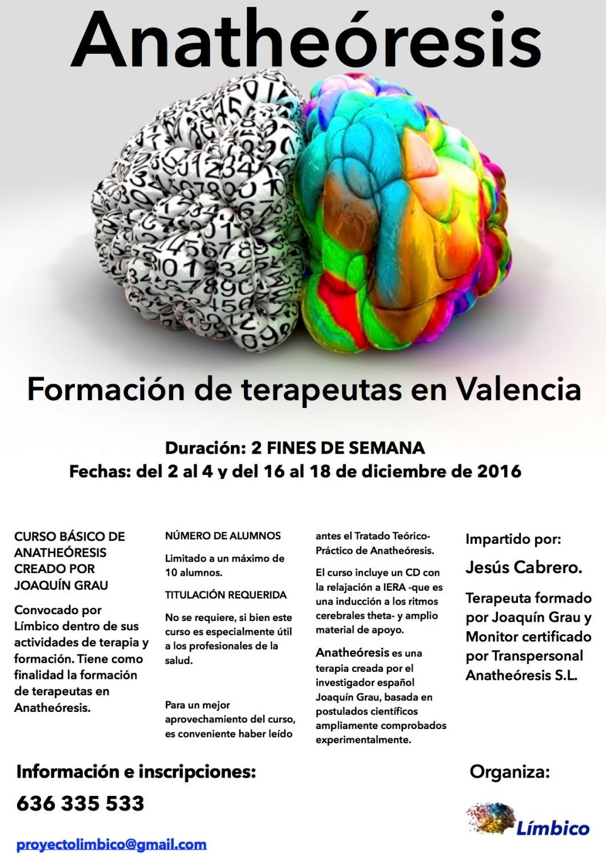 cartel-info-curso-valencia-dic16